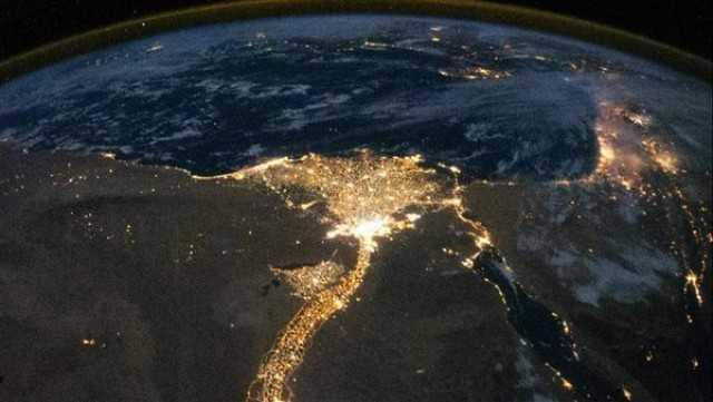 زهرة لامعة ذات جذع طويل ...السفارة الامريكية عن  القاهرة ونهر النيل