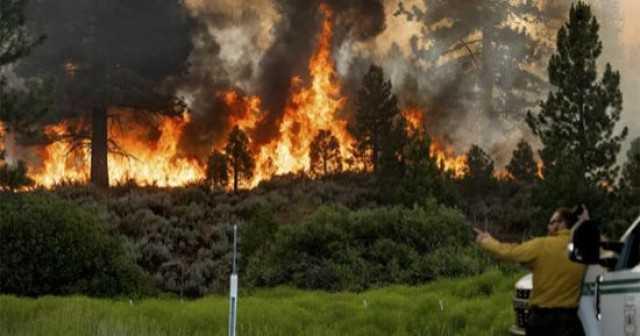 حرائق الغابات تمتد لمناطق جديدة بلبنان.. ومروحيات الجيش تحاول محاصرتها