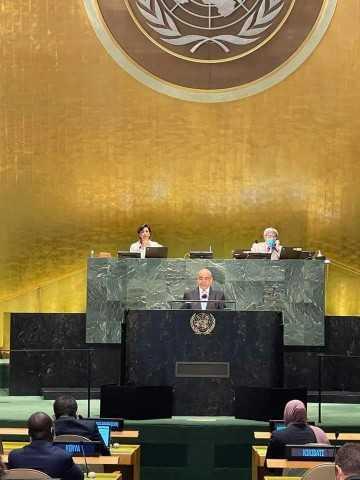 إشادة دولية واسعة برئاسة مصر للجنة بناء السلام