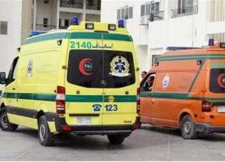 مصرع رضيع وإصابة 4 أشخاص في حادث بأسيوط